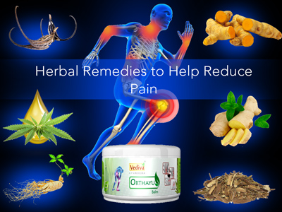 Herbal Remedies to Help Reduce Pain